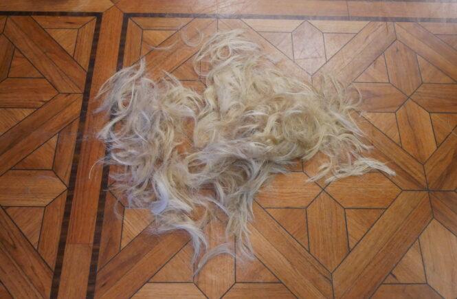 Klippte av håret